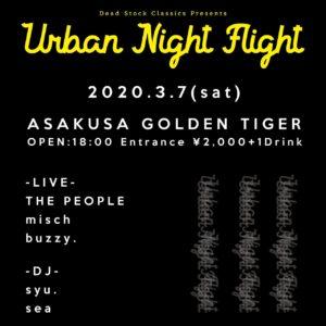 Urban Night Flight